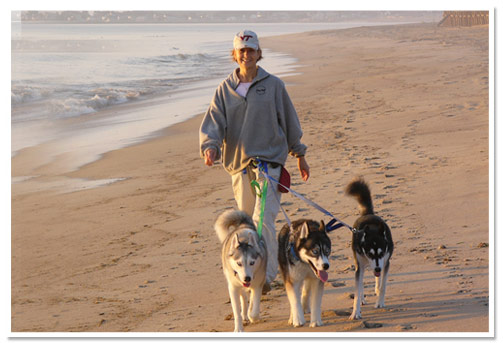 Linda Powers walking the huskies on the beach